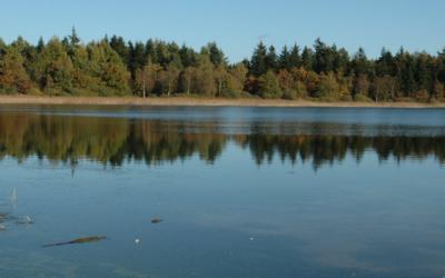 Grundvand og klimaforandringer
