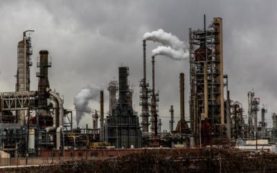 Kulstofkredsløbet – en kort forklaring